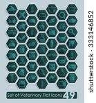 set of veterinary flat icons | Shutterstock .eps vector #333146852