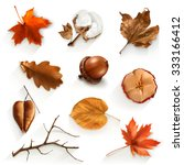 autumn scrap set  vector...