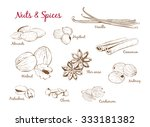 hand drawn vector set of spices ... | Shutterstock .eps vector #333181382