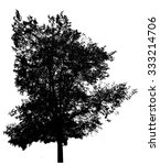Black Tree Silhouette  Isolate...