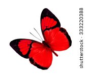 Stock photo beautiful red butterfly isolated on white background the yellow orange tip ixias pyrene in fancy 333220388