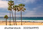 manhattan beach  usa   march 28 ... | Shutterstock . vector #333564995