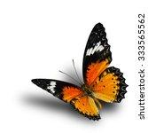 the beautiful flying leopard... | Shutterstock . vector #333565562