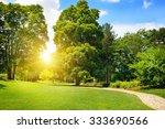 summer park with beautiful... | Shutterstock . vector #333690566