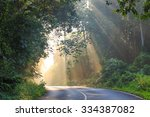 tropical rainforest  road at... | Shutterstock . vector #334387082