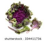 Kale Flower On White Background