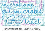 gut microbes word cloud on a... | Shutterstock .eps vector #334467092