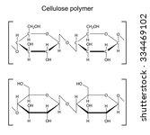 cellulose polymer molecule  ... | Shutterstock . vector #334469102