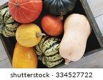 Squash Vegetable Selection