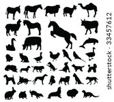 lots of domestic animals...   Shutterstock .eps vector #33457612