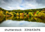 colorful autumn landscape with... | Shutterstock . vector #334643696