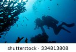 the coral reef scuba diving | Shutterstock . vector #334813808