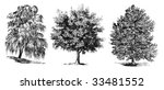 set of vintage trees drawing | Shutterstock .eps vector #33481552