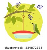 Hummingbird And Feeder   Cute...