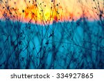 dried flowers on a background... | Shutterstock . vector #334927865