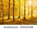 beautiful bright golden sun... | Shutterstock . vector #335010188