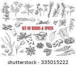 set of herbs and spices in... | Shutterstock .eps vector #335015222