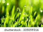 fresh green grass with water... | Shutterstock . vector #335059316