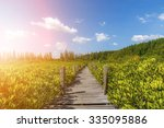 walkway made from wood and...   Shutterstock . vector #335095886