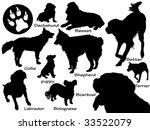 set of dogs | Shutterstock . vector #33522079