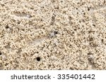 abstract ghost crab hole on the ... | Shutterstock . vector #335401442