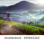 farmer tea plantation malaysia... | Shutterstock . vector #335641262