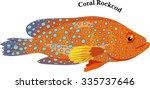 marine fish  coral rockcod    Shutterstock .eps vector #335737646