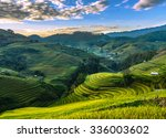 mu cang chai  yenbai  vietnam   ... | Shutterstock . vector #336003602
