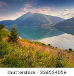 colorful summer morning in the... | Shutterstock . vector #336534056
