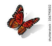 the monarch butterfly danaus... | Shutterstock .eps vector #336790832