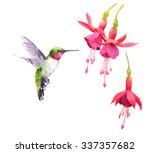 Watercolor Bird Hummingbird...