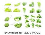 fresh vegetables set on a white ... | Shutterstock . vector #337749722