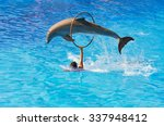 dolphin jumping by wheel | Shutterstock . vector #337948412