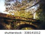 autumn | Shutterstock . vector #338141012