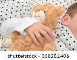 Small photo of Teddy bear sleeps