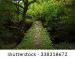 Bridge Way In The Woods. Its...