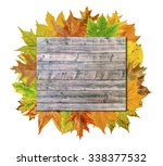 empty wooden board with lot... | Shutterstock . vector #338377532