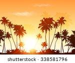 Palms Silhouettes At Orange...