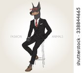 doberman pinscher dog dressed... | Shutterstock .eps vector #338844665