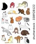 Stock vector cats posture set 338928122