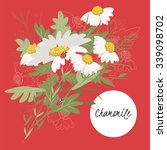 illustration chamomile flower... | Shutterstock .eps vector #339098702