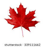 Red Maple Leaf  Isolated On...