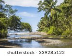 Beach And Jungle In Corcovado...
