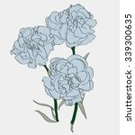 carnation. hand drawn vector... | Shutterstock .eps vector #339300635