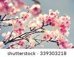 spring flowers | Shutterstock . vector #339303218