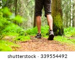 Male Walking In A Forest