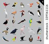 Various Birds Cartoon Vector...