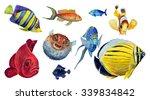 watercolor tropical fish set.... | Shutterstock . vector #339834842