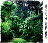 tropical garden   Shutterstock . vector #339911906