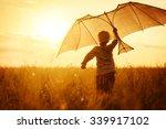 Boy Flying A Kite In A Field A...